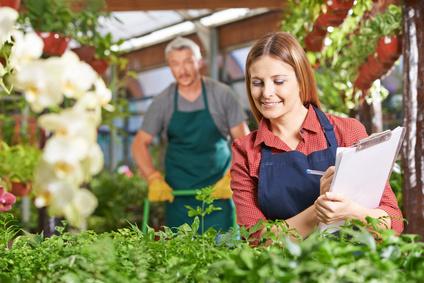 Frau kontrolliert Pflanzenzüchtung in Gärtnerei
